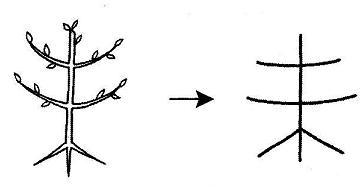 kanji 未