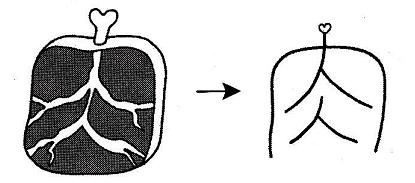 kanji 肉
