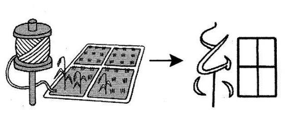 kanji 細