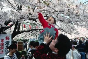 OHANAMI Các lễ hội truyền thống Nhật Bản