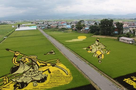 Choáng với nghệ thuật trồng lúa Tanbo Nhật Bản