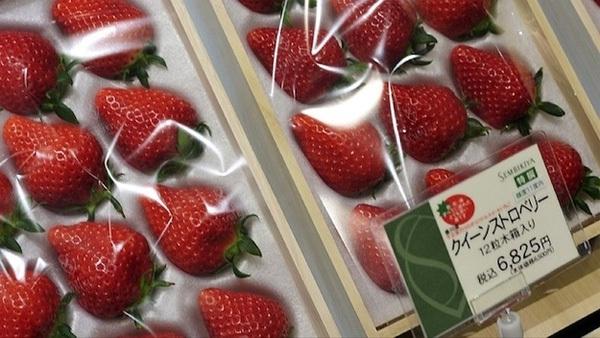 cua hang trai cay Sembikiya tokyo 3 Cửa hàng trái cây đắt đỏ bậc nhất Tokyo