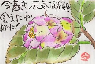 etegami Nhat ban Độc đáo nghệ thuật viết thư tranh etegami Nhật Bản