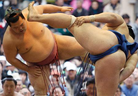 Lễ hội mùa xuân của các Sumo