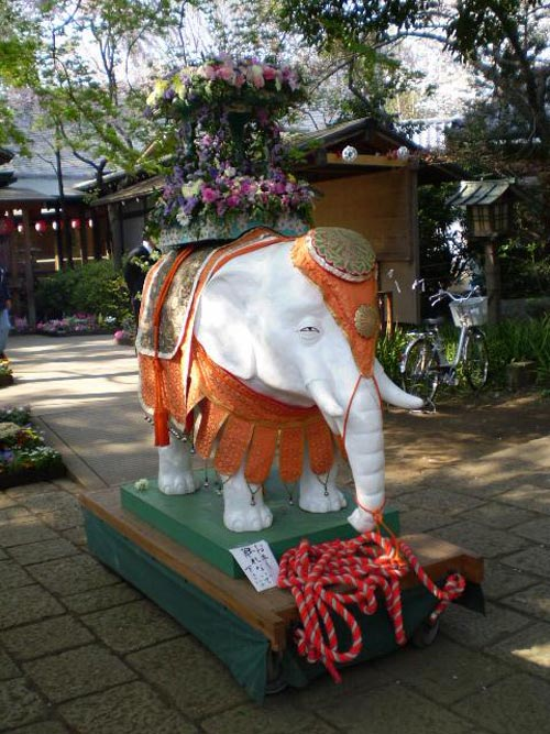 phat dan 1 Lễ Phật đản ở Nhật.