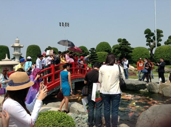 Ngắm vườn Nhật Bản trong lòng Tp.HCM