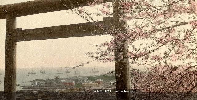 Yokohama Torii [Tổng Hợp]   Những bức ảnh về nước Nhật xưa