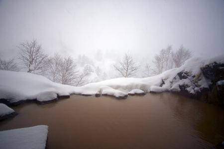 duhochoasen322 Thành phố Furano, Hokkaido, Nhật Bản