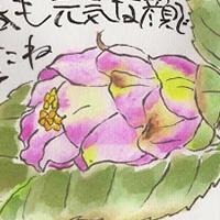Độc đáo nghệ thuật viết thư tranh etegami Nhật Bản