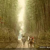 Những bức ảnh về nước Nhật xưa