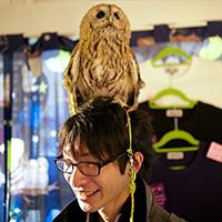 Quán cafe cho những người thích chim cú ở Nhật