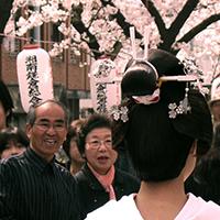 Ý nghĩa 17 loài hoa ở Nhật Bản