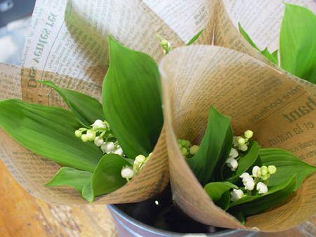 duhochoasen234 Thung lũng hoa Linh Lan ở Hokkaido