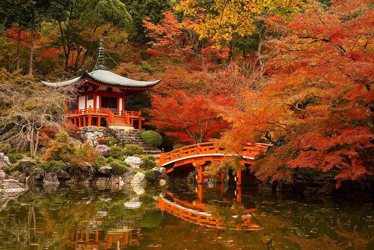 Tokyo và những điểm đến thú vị