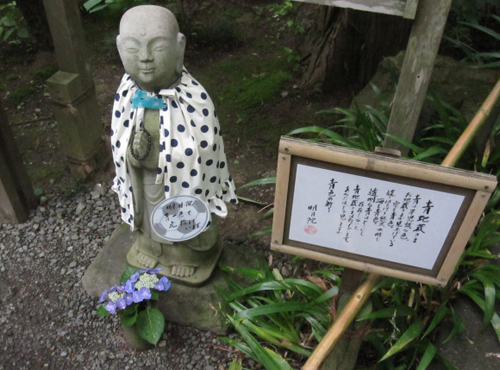 den Meigetsuin Vẻ đẹp rực rỡ của hoa tú cầu trong mùa mưa ở Nhật
