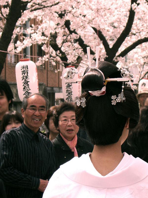hoa sakura Ý nghĩa 17 loài hoa ở Nhật Bản