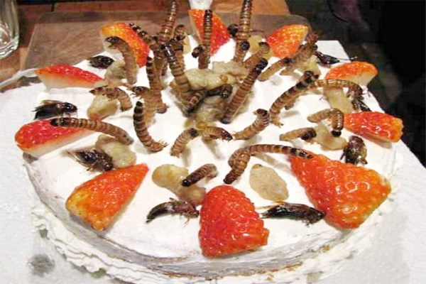 5 món ăn từ côn trùng được yêu thích nhất