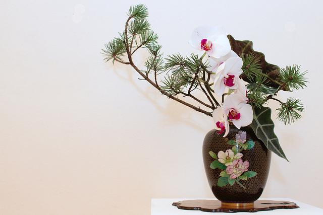 Những loại hình nghệ thuật truyền thống Nhật Bản