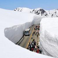 Con đường tuyết ở Nhật Bản