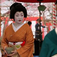 Geisha thời du lịch tại Nhật Bản
