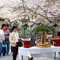 Lễ Phật đản ở Nhật.
