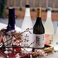 Rượu Sake truyền thống Nhật Bản