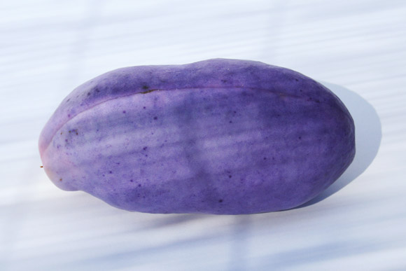 trai cay Akebi nhat ban Trái cây Akebi Nhật Bản