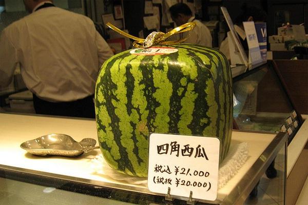 Trái cây cực kỳ đắt đỏ ở Tokyo